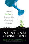 The Intentional Consultant